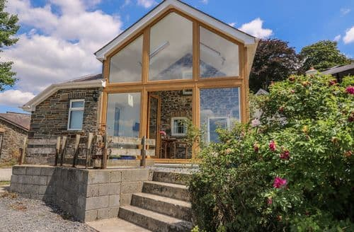 Last Minute Cottages - Cosy Llanwrda Wennol S6224
