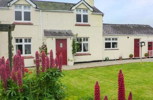 Last Minute Cottages - Cosy Ruthin Rental S13308