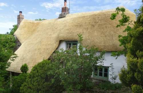 Last Minute Cottages - Adorable West Devon Cottage S84949