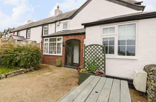 Last Minute Cottages - Cosy Meliden Cottage S88333