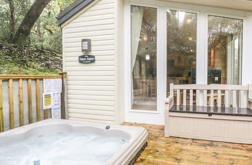 Last Minute Cottages - Attractive Prenteg Lodge S85777
