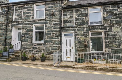 Last Minute Cottages - Delightful Trawsfynydd Cottage S95070
