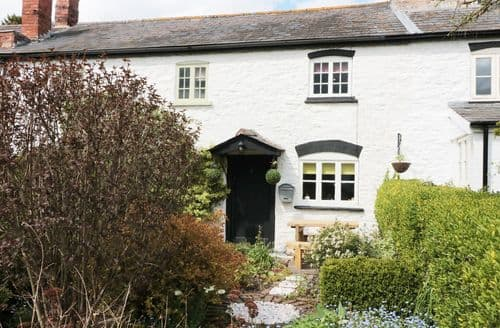 Last Minute Cottages - Inviting Eardisley Cottage S98720
