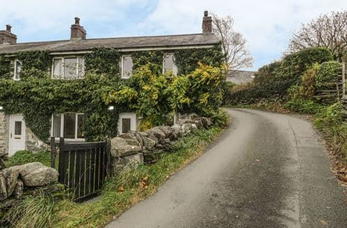 Last Minute Cottages - Groes Newydd