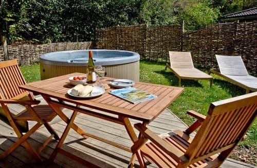 Last Minute Cottages - Stunning Bovey Tracey Lodge S135248