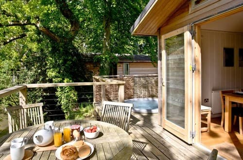 Last Minute Cottages - Stunning Bovey Tracey Lodge S135249