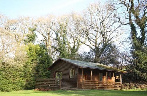 Last Minute Cottages - Gorgeous North Cornwall Lodge S136033