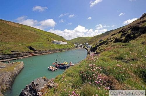 Last Minute Cottages - Exquisite North Cornwall Cottage S136298