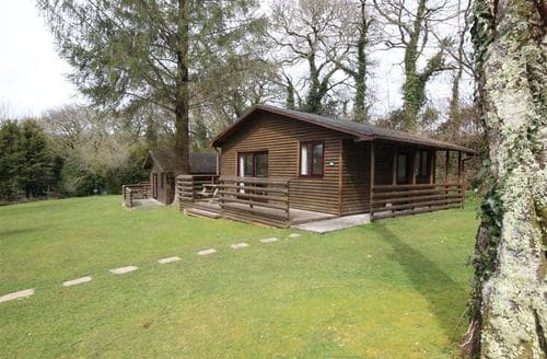 Last Minute Cottages - Attractive North Cornwall Lodge S97080