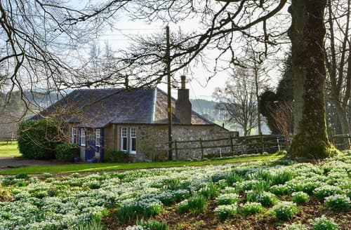 Last Minute Cottages - Charming Biggar Lodge S140458