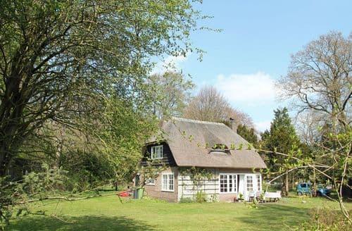 Last Minute Cottages - Quaint Oostvoorne Cottage S160618