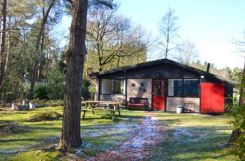 Big Cottages - Huisje Bos en Veld