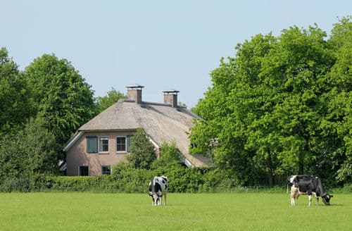 Last Minute Cottages - Captivating Eesergroen Cottage S161667