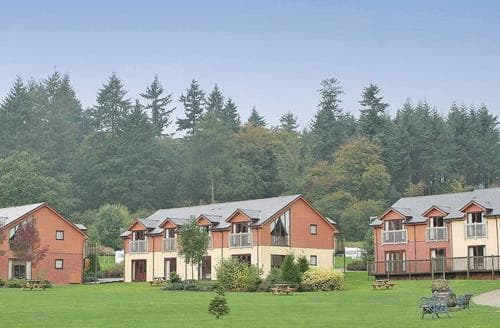 Last Minute Cottages - Delightful Forest Of Dean Lodge S111673