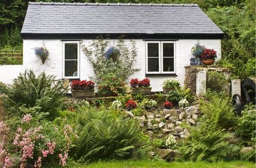 Last Minute Cottages - Stunning Mold Cottage S5061