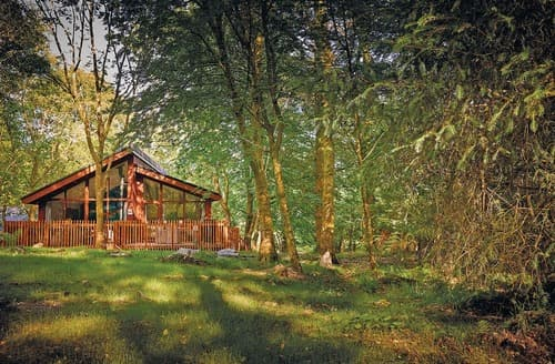 Last Minute Cottages - Luxury Beddgelert Lodge S109113