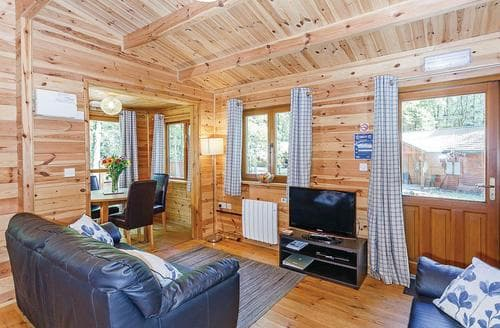 Last Minute Cottages - Woodland Beech Lodge