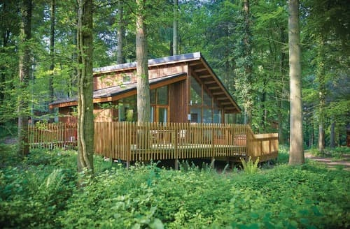 Last Minute Cottages - Forest of Dean Silver Birch 3 (Pet)