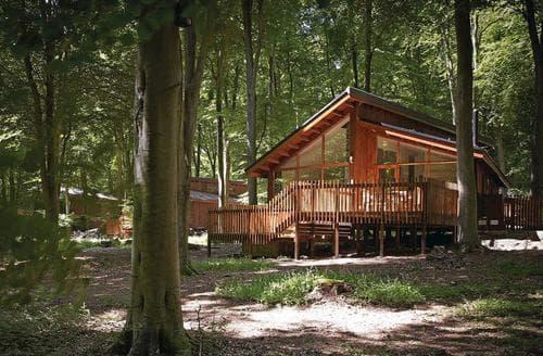 Last Minute Cottages - Blackwood Golden Oak 2