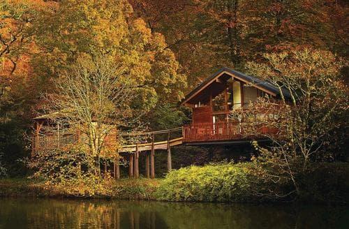 Last Minute Cottages - Deerpark Golden Oak Treehouse