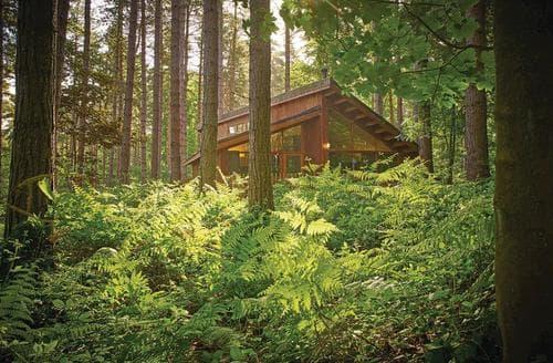 Last Minute Cottages - Splendid Sherwood Forest Lodge S111413