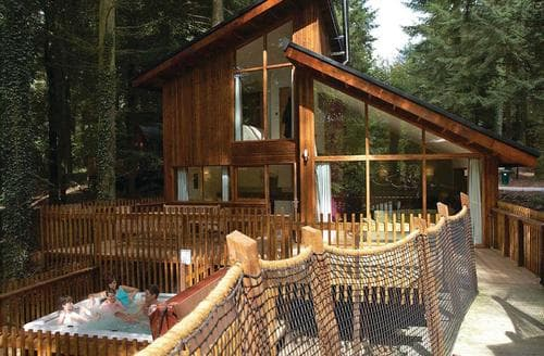 Last Minute Cottages - Blackwood Golden Oak Treehouse 5 bed