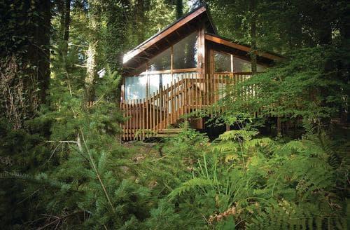 Last Minute Cottages - Forest of Dean Golden Oak 1