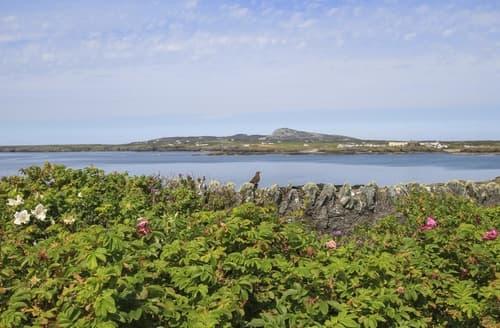 Last Minute Cottages - Charming Trearddur Bay Cottage S166258