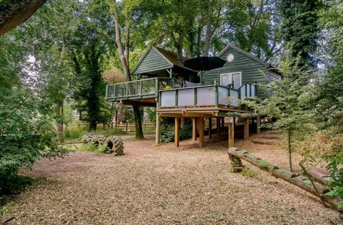 Last Minute Cottages - Shuter Treehouse