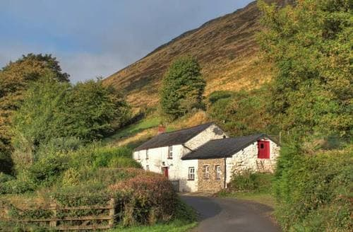 Last Minute Cottages - Delightful Llanwrda Rental S5788