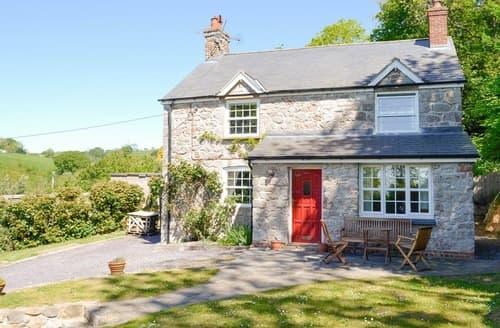 Last Minute Cottages - TY NEWYDD Y GRAIG - 28017
