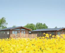 Snaptrip - Last minute cottages - Wonderful Burnham On Sea Lodge S70265 - The lodge setting