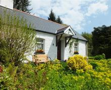 Snaptrip - Last minute cottages - Attractive Saundersfoot Cottage S71861 - 135-0-exterior