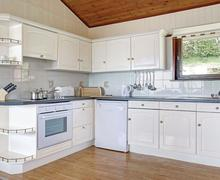 Snaptrip - Last minute cottages - Tasteful Laugharne Lodge S73963 - Silver Lodge<br />