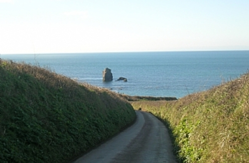 Snaptrip - Last minute cottages - Delightful Kingsbridge Life S901 - Thurlestone Rock