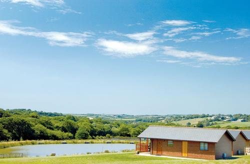 Snaptrip - Last minute cottages - Beautiful Holsworthy Lodge S75572 - The park setting