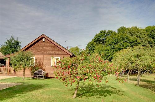 Snaptrip - Last minute cottages - Inviting High Halden Rental S10527 - TN560 - External