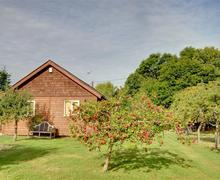 Snaptrip - Last minute cottages - Inviting High Halden Rental S10527 - TN560 - External
