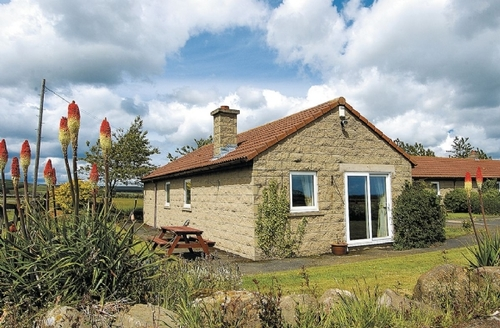 Snaptrip - Last minute cottages - Excellent Alnwick Cottage S14399 -