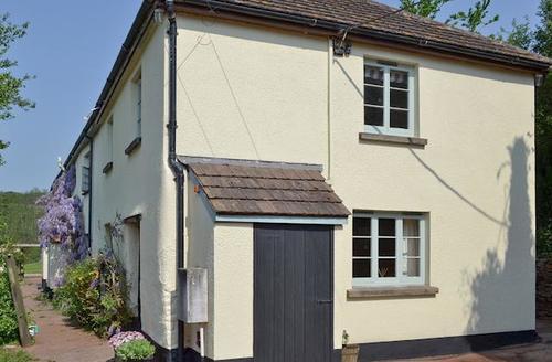 Snaptrip - Last minute cottages - Wonderful Tiverton Cottage S50325 -