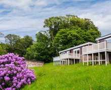 Snaptrip - Last minute cottages - Inviting Bideford Lodge S6611 -