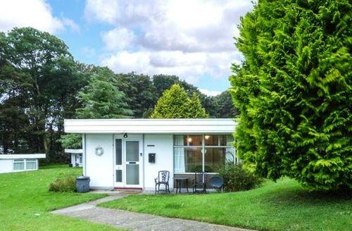 Snaptrip - Last minute cottages - Beautiful Roch Cottage S72132 -