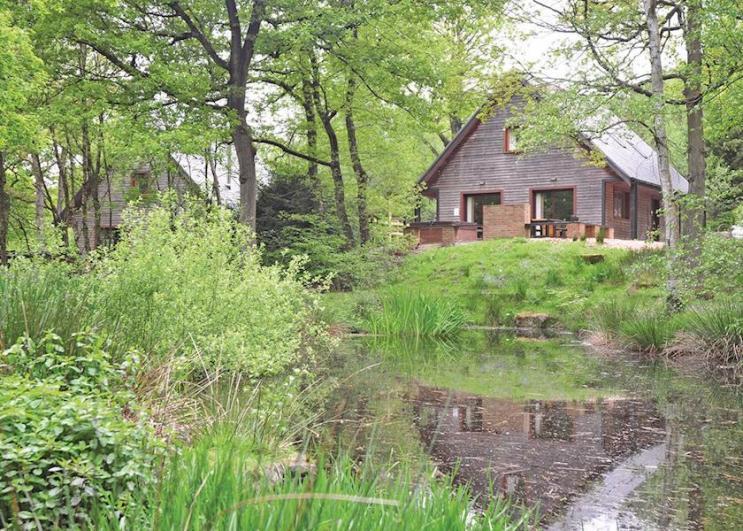 Ramshorn Estate Woodland Lodges Ramshorn Estate Woodland Lodges