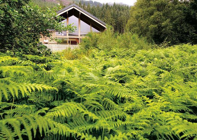 Hoseasons Scotland: Strathyre Forest Holidays Hoseasons Scotland: Strathyre Forest Holidays