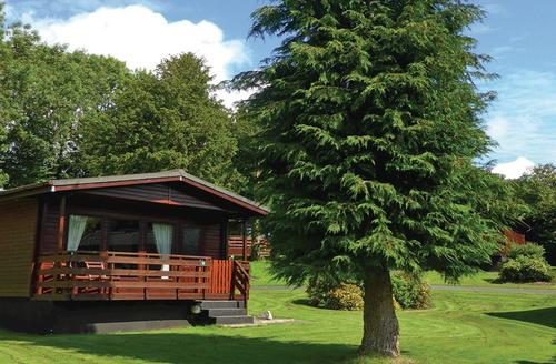 Snaptrip - Last minute cottages - Attractive Newton Stewart Lodge S78103 - Typical Bluebell Lodge