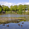 Snaptrip - Last minute cottages - Beautiful Bovey Tracey Lodge S76149 -