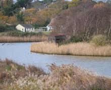 Snaptrip - Last minute cottages - Quaint Seaview Cottage S76170 -