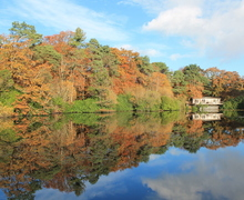 Snaptrip - Last minute lodges - Superb Bovey Tracey Lodge S76743 -