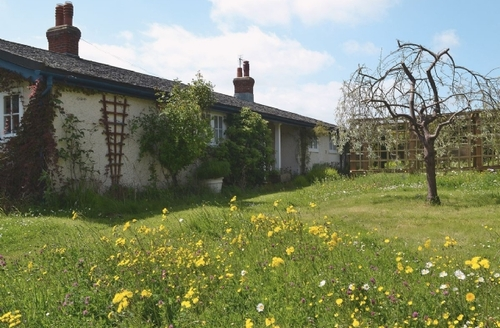 Snaptrip - Last minute cottages - Wonderful Bembridge Cottage S14168 -