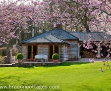 Snaptrip - Last minute cottages - Adorable Usk Cottage S40137 - Holly lodge Web Jpegs-7913